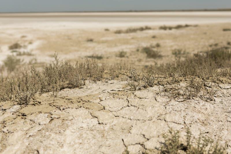 F?ljder av den Aral havskatastrofen Sandig salt ?ken p? st?llet av gamlabotten av det Aral havet arkivbild