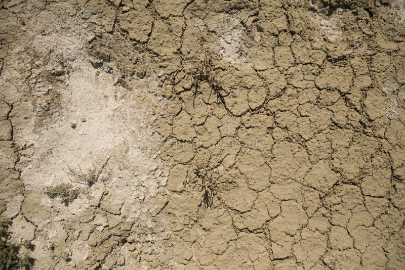 F?ljder av den Aral havskatastrofen Sandig salt ?ken p? st?llet av gamlabotten av det Aral havet royaltyfri fotografi