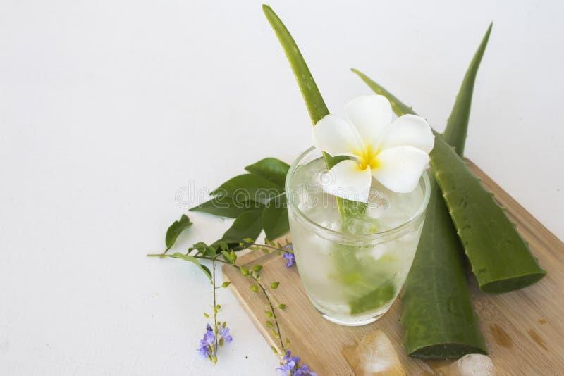 F?r aloevera f?r v?xt- sund drink kallt vatten coctail royaltyfri fotografi