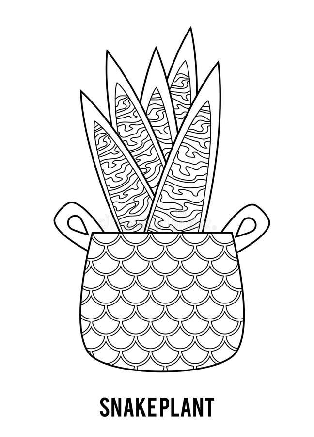 f?r f?rgl?ggningdiagram f?r bok f?rgrik illustration Tecknad filmsamling av Houseplants, ormväxt fotografering för bildbyråer