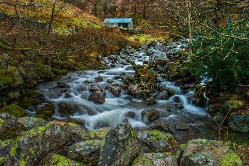 F?r skogflod f?r vattenfall gr?nt landskap f?r str?m fotografering för bildbyråer