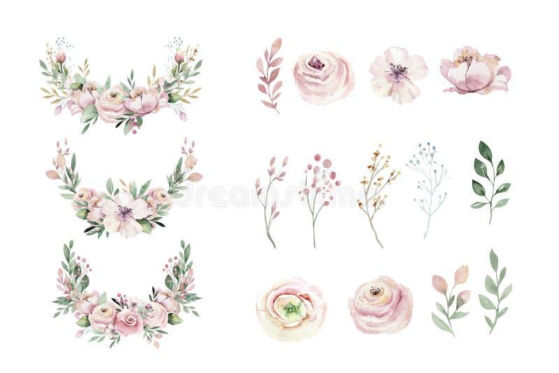 F?r vattenf?rgkrans f?r hand utdragen illustration Isolerat botaniskt virvlar av gr?na filialer och blommasidor V?r och stock illustrationer