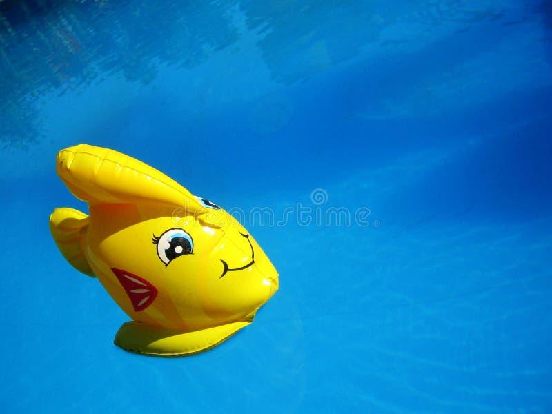 F?rbluffa den gula leksakfisken i djupbl? tapet f?r simbass?ngvattenmakro royaltyfri bild