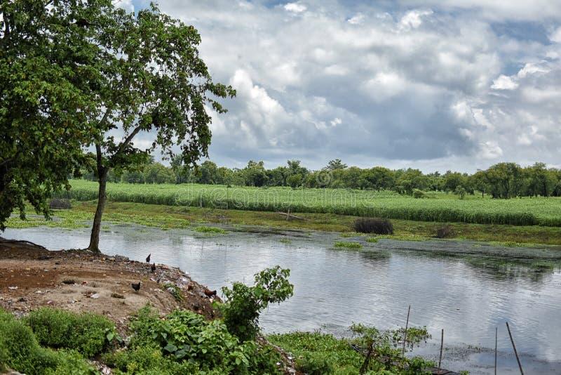 F?rbluffa landskap av den Jalangi floden, ?r en filial av Gangeset River i Murshidabad och Nadia omr?den i det indiska tillst?nde royaltyfri foto