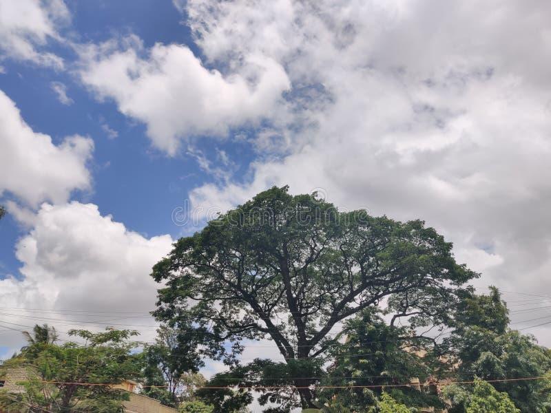 F?rbluffa sikt av moln arkivfoto