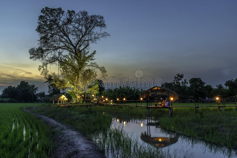 F?rbud Nong Khlong Dragningar i Singburi Thailand arkivbild