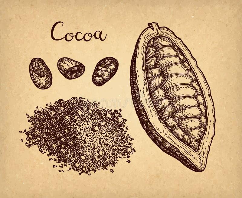 F?rgpulver skissar av kakao vektor illustrationer