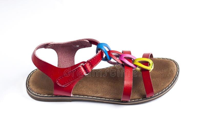 F?rgrik kvinnlig sandal p? vit bakgrund royaltyfri foto