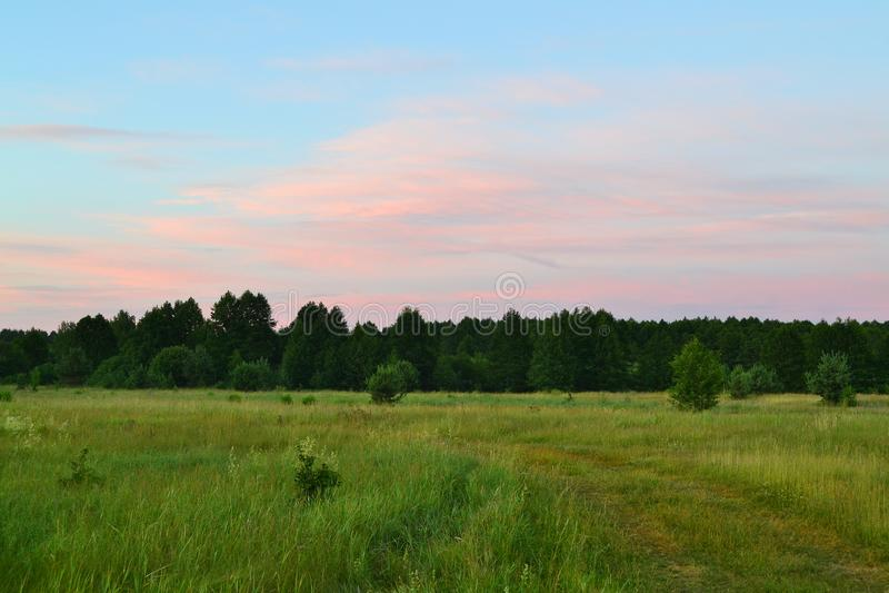 f?rgrik liggandesommar Rött solnedgångskoglandskap Naturhorisontallandskap Pittoresk scenisk siktsbakgrund Sommar royaltyfria foton
