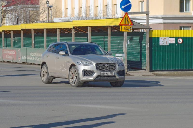 F-ritmo de Jaguar imagem de stock royalty free