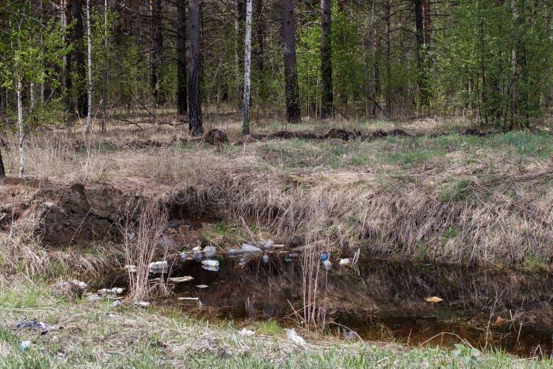F?rorening av naturen Avskr?de och plast- flaskor sv?var p? vattnet av beh?llaren inom skogen arkivfoton