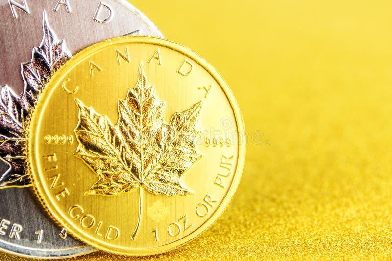 F?rsilvra och den guld- kanadensiska l?nnl?vet ett uns mynt p? guld- bakgrund fotografering för bildbyråer