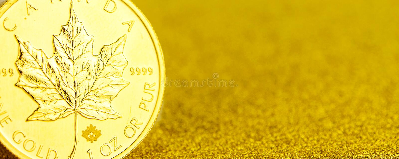 F?rsilvra och den guld- kanadensiska l?nnl?vet ett uns mynt p? guld- bakgrund arkivfoton