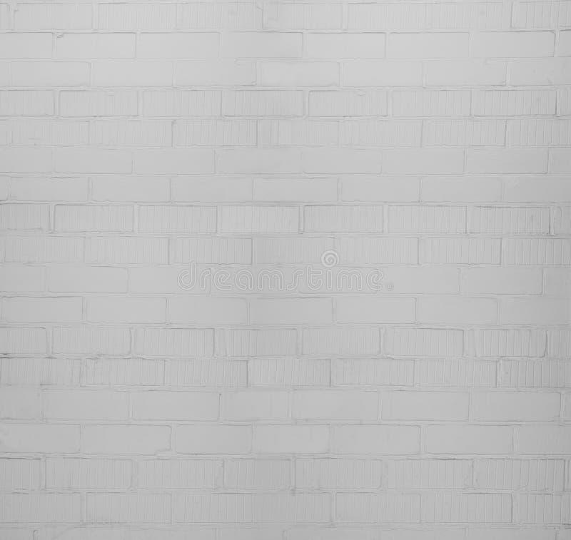 F?rst?rd v?gg f?r vit tegelsten Grunge texturbakgrund royaltyfri bild