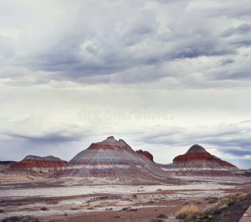 F?rstenade Forest National Park, Arizona, USA royaltyfri bild