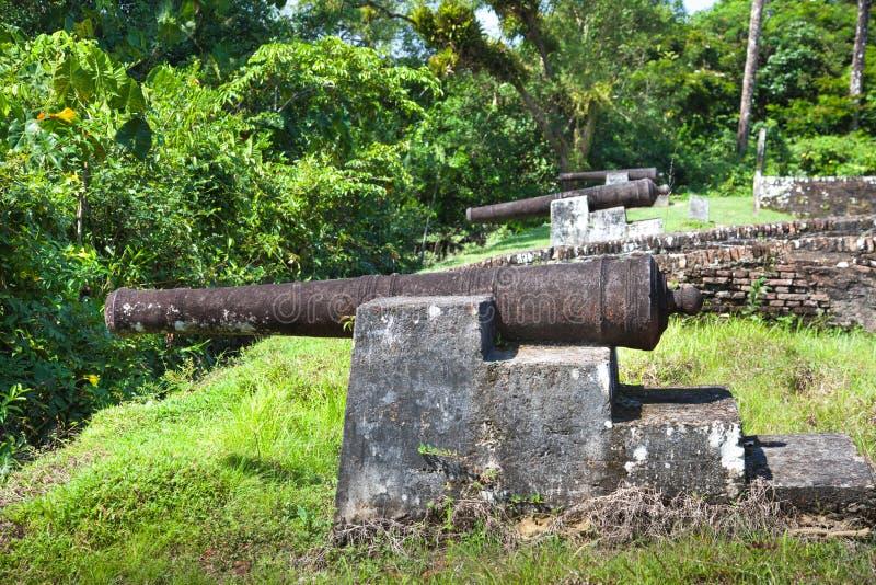 f?stning Vapen av Fort Zeelandia, Guyana Fortet Sj?lland lokaliseras p? ?n av den Essequibo floden Fortet byggdes i 1743 arkivbild