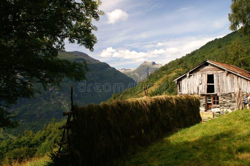 Faça feno em uma cremalheira no próximo de Geiranger, Noruega imagens de stock royalty free