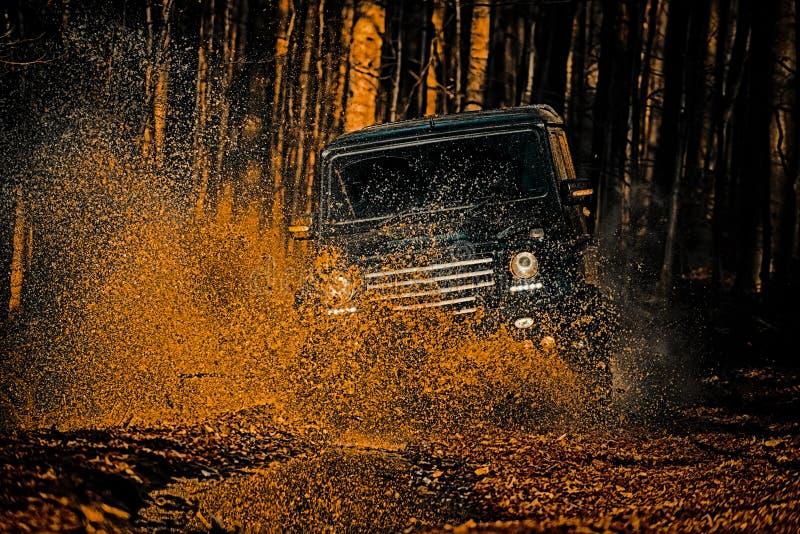 Faça sinal aos pneus das rodas e fora de estrada que vai no suv do safari da poeira Offroader da expedi??o Compet?ncia da reuni?o fotografia de stock