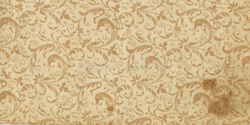 Faça a varredura da folha em branco de um livro velho, verde-cinzento-marrom, com teste padrão floral denso e intrincado ilustração stock