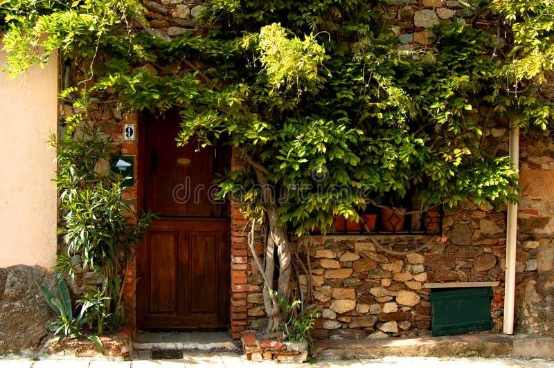 Download Façade photo stock. Image du verdure, bois, façade, planté - 736604