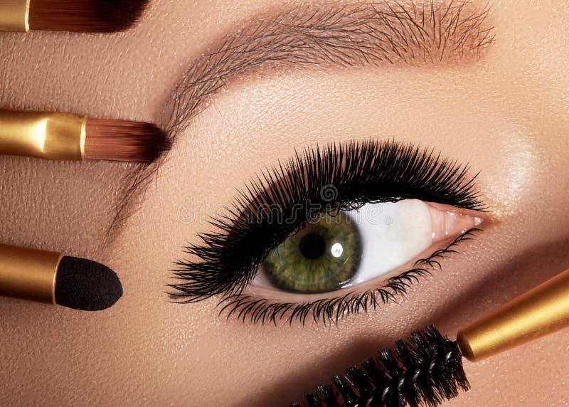 Façonnez la femme appliquant le fard à paupières, le mascara sur la paupière, le cil et le sourcil utilisant la brosse de maquill images libres de droits