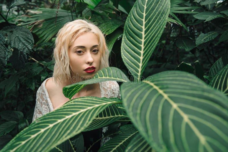 Façonnez le portrait de beaux jeunes avec les cheveux blonds et le perfectionnez photographie stock
