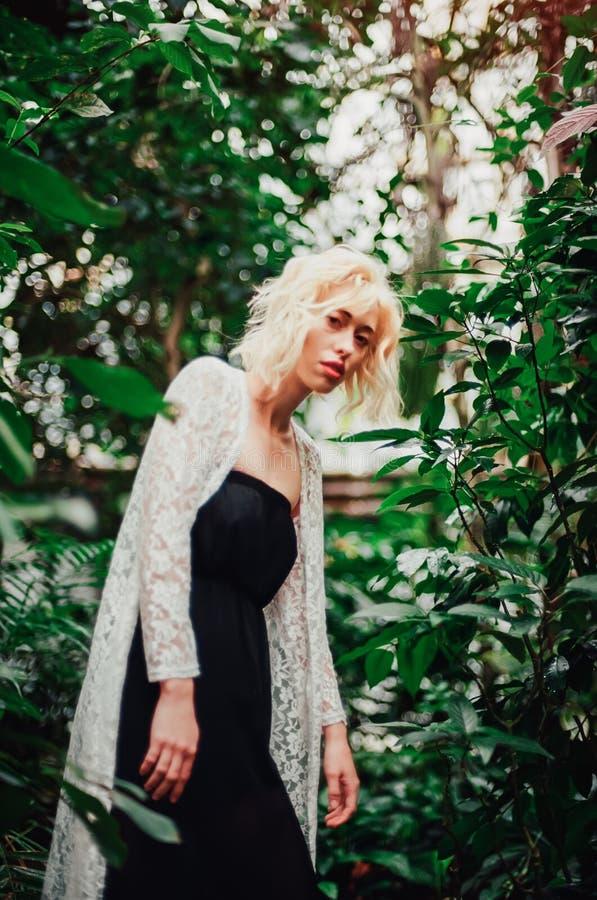 Façonnez le portrait de la belle jeune femme dans la forêt tropicale photos libres de droits