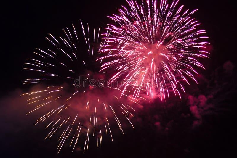 Fa?scas brilhantes cor-de-rosa de fogos de artif?cio festivos no c?u noturno fotografia de stock