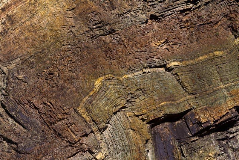 Fałdowe chert warstwy przy tęczy skałą, Oregon zdjęcia royalty free