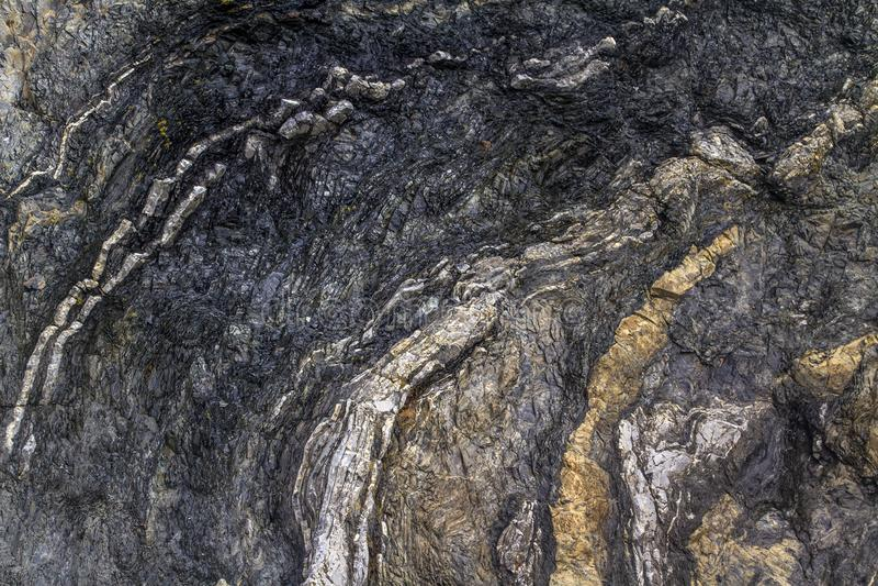 Fałdowe rockowe warstwy wzdłuż wodołazu wybrzeża obrazy stock