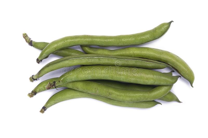 Faba var do Vicia das favas major nas vagens imagens de stock royalty free