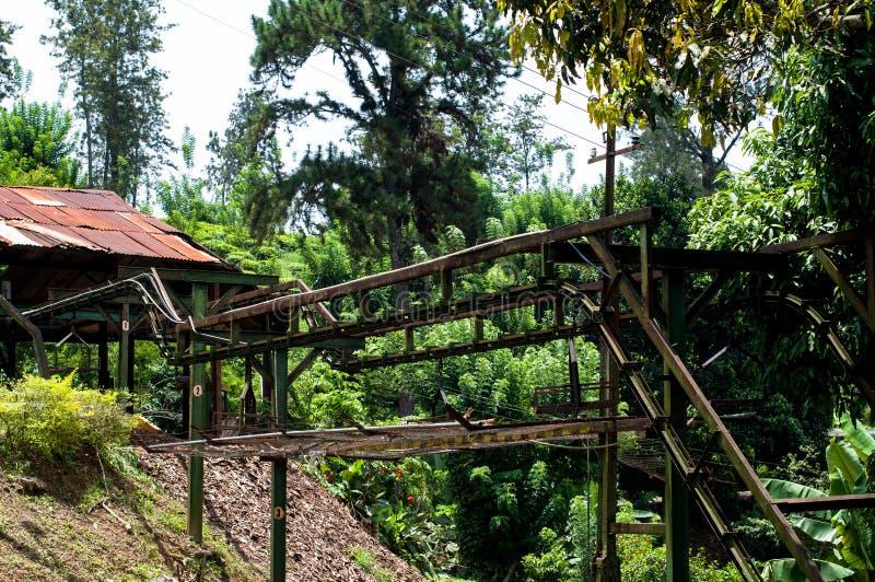 Fabbrica del tè, proprietà di geragama Lo Sri Lanka, Kandy immagini stock