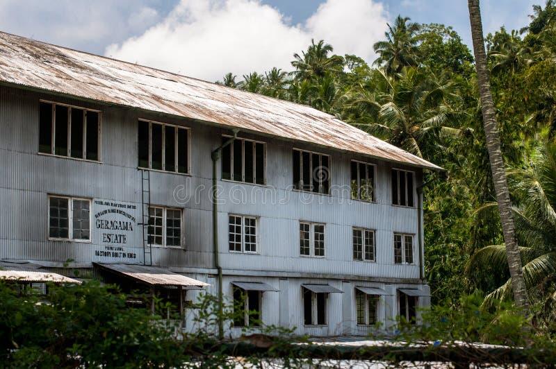 Fabbrica del tè, proprietà di geragama Lo Sri Lanka, Kandy immagine stock libera da diritti