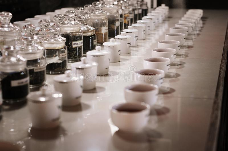 Fabbrica del tè, proprietà di handunugoda Lo Sri Lanka, Ahangama fotografia stock libera da diritti