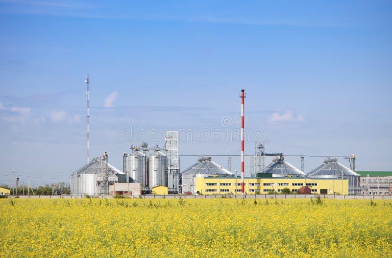 Fabbrica dell'olio di seme di ravizzone producendo biodiesel. fotografia stock