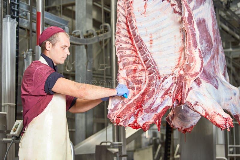 Fabbrica di fabbricazione della carne carcassa del manzo di taglio del macellaio fotografie stock libere da diritti