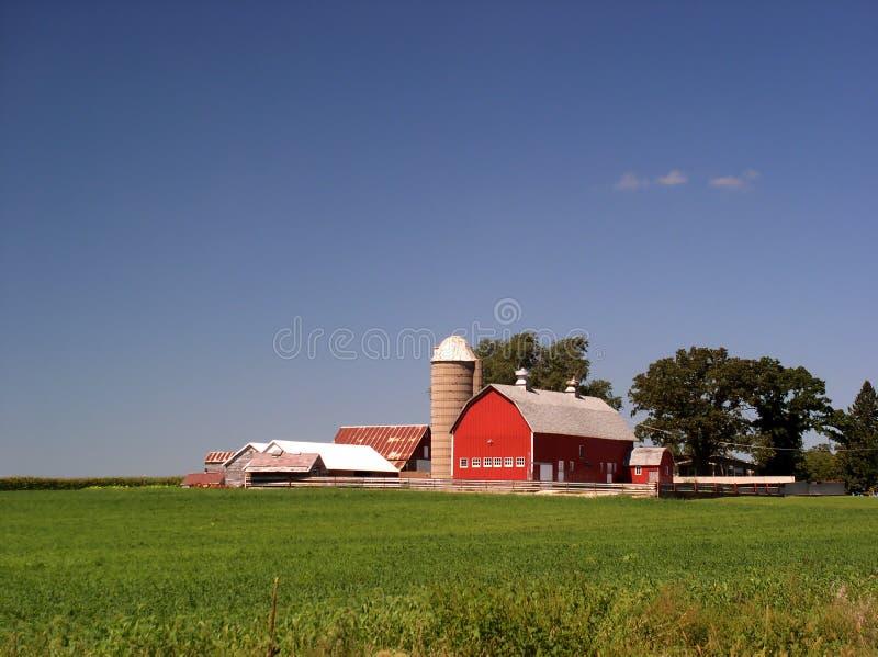 Fabbricato agricolo in estate immagine stock