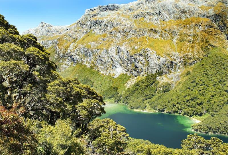 Fabelhafte Landschaft in Neuseeland stockbilder