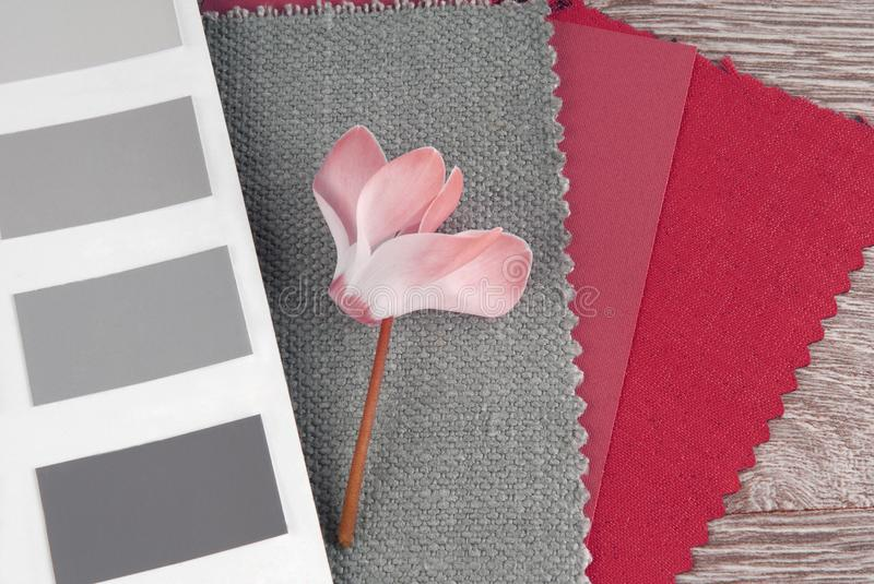 Fabric swatches designing combine. With colors royalty free stock images