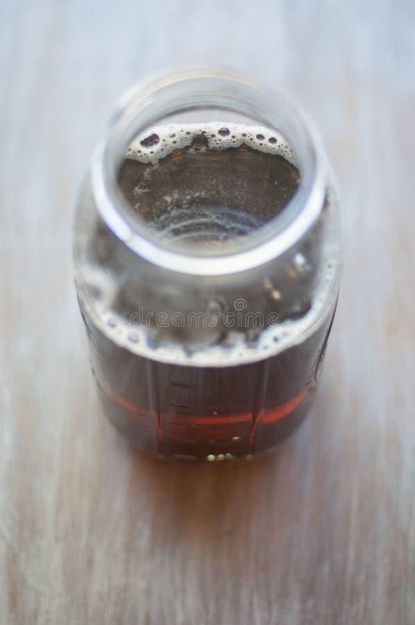 Fabricação de cerveja Kombucha imagens de stock