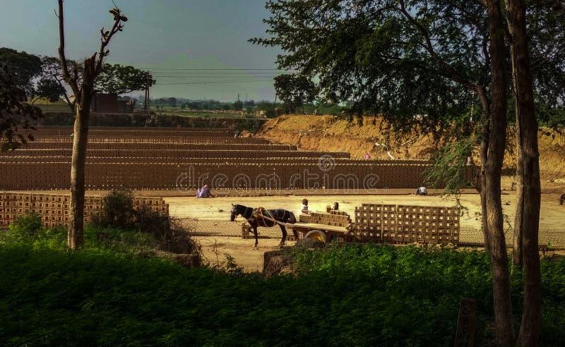 Fabricación de ladrillos, Punjab, la India fotografía de archivo libre de regalías