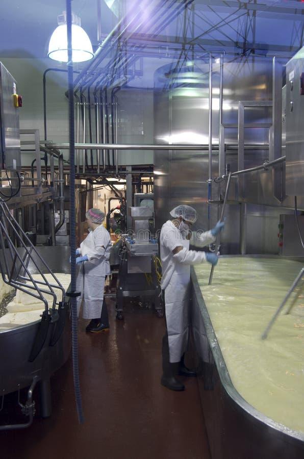 Fabricación del queso fotos de archivo libres de regalías