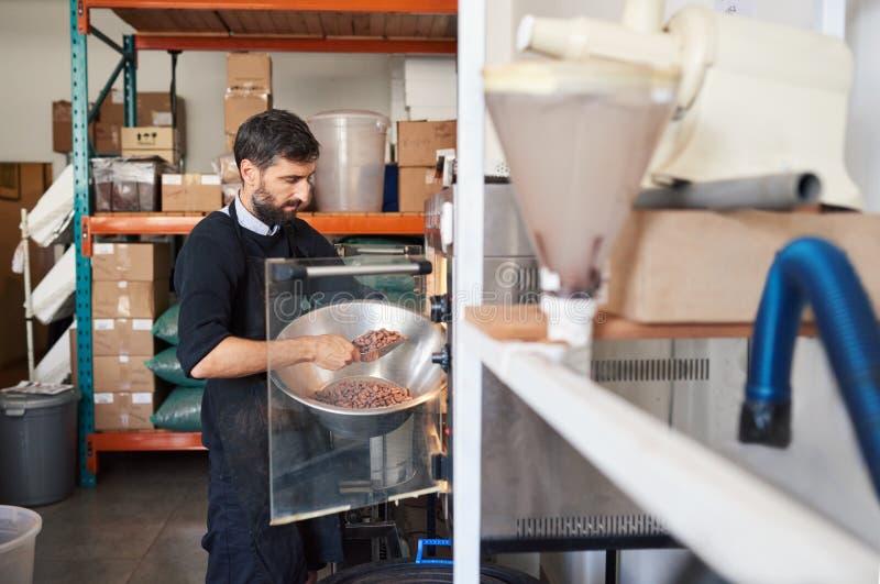 Fabricant de chocolat plaçant des graines de cacao dans la machine de torréfaction image libre de droits