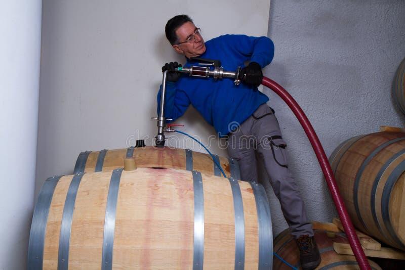 Fabricant de vin de cave photographie stock libre de droits