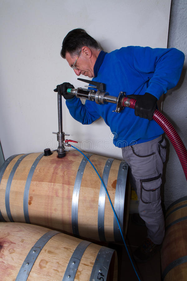 Fabricant de vin de cave image libre de droits