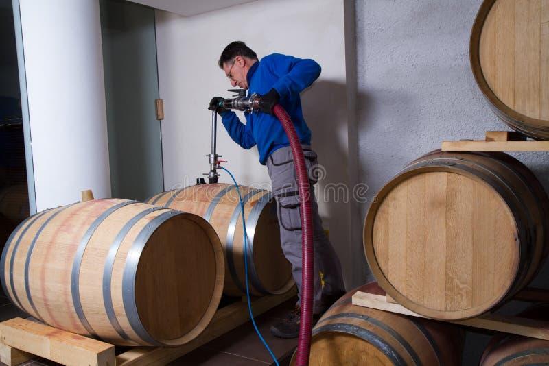 Fabricante del vino de la bodega imagenes de archivo