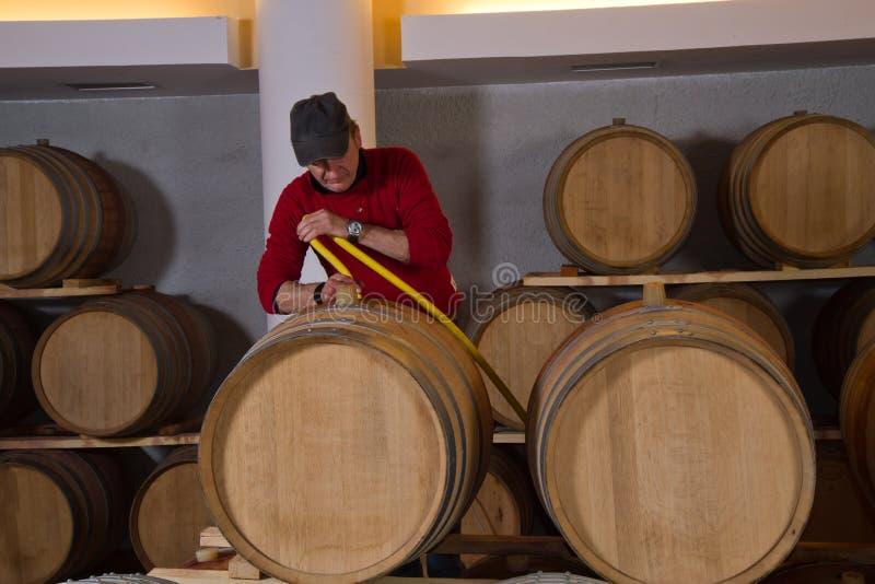 Fabricante del vino de la bodega foto de archivo libre de regalías