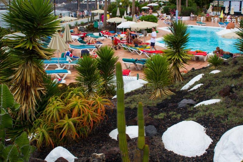 Fabricantes del día de fiesta que relajan en el sol en una piscina del hotel al lado del los cactus y el jardín de piedras hermos fotografía de archivo libre de regalías