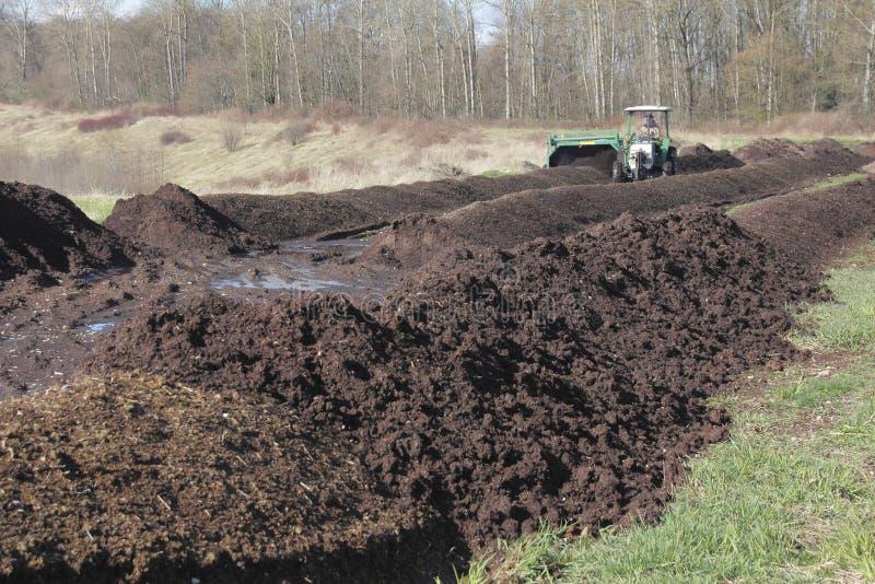Fabrication du compost image stock