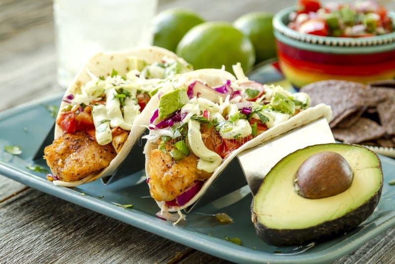 Fabrication du Tacos de poisson frais image libre de droits
